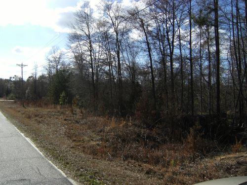 Large Wooded Building Lot : Winnsboro : Fairfield County : South Carolina