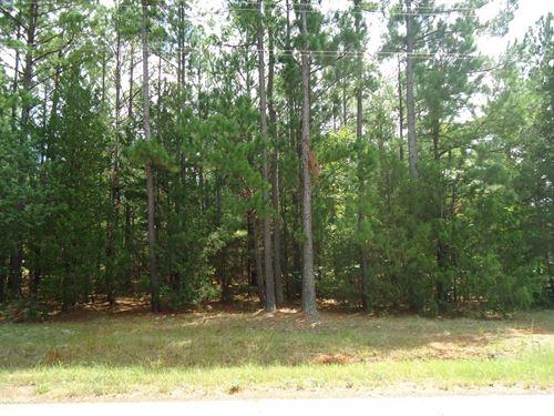 Nice.74 Acre Lot Lake Monticello : Blair : Fairfield County : South Carolina