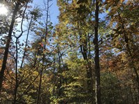5.89 Acres..road Frontage..views : Pikeville : Bledsoe County : Tennessee