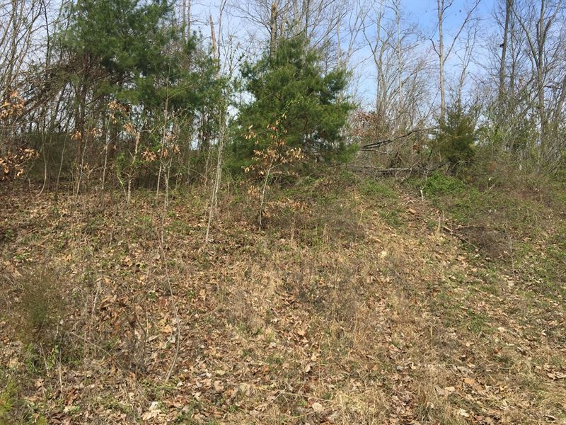 East Tennessee Unrestricted Land : Bean Station : Grainger County : Tennessee