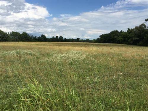 Hulon Ferrell Rd, Bloomington : Bloomington Springs : Putnam County : Tennessee