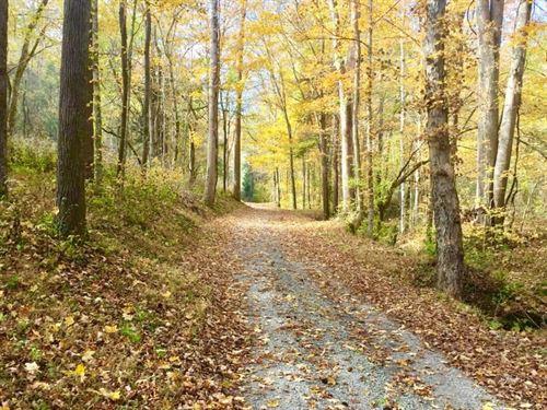 Country Property Chestnut Mound TN : Chestnut Mound : Putnam County : Tennessee