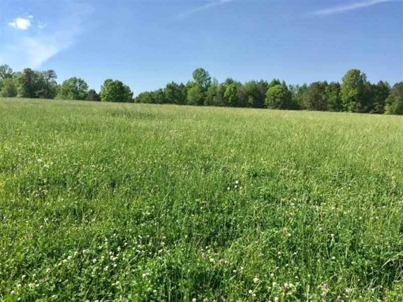 Development Property Sunbright : Cookeville : Putnam County : Tennessee