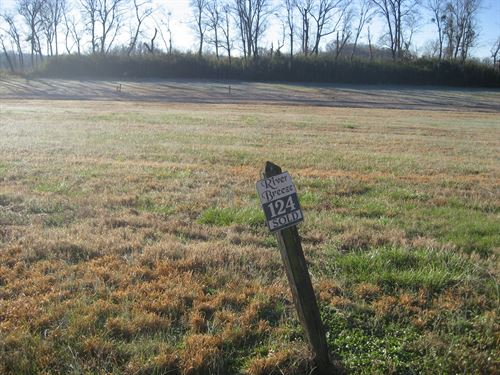 Tennessee River View Lot Hardin : Crump : Hardin County : Tennessee