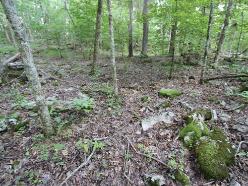 Culleoka, Tn Maury County 5 Acres : Culleoka : Maury County : Tennessee