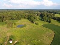 Henderson County, TN 130 Acres Crop : Darden : Henderson County : Tennessee