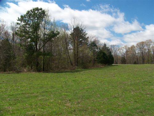 Lg Acreage Tn, Hunting, Pasture : Enville : Chester County : Tennessee