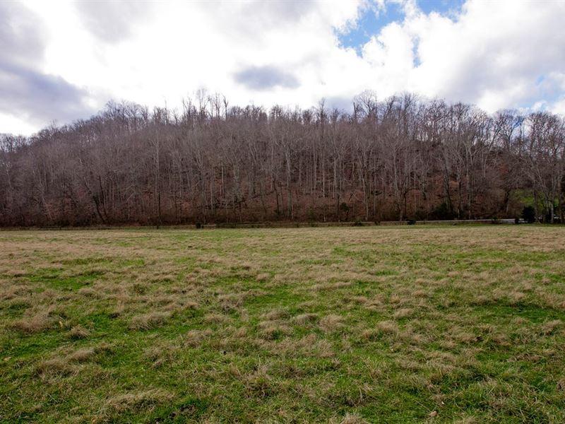 Pristine 64 Acre Farm Franklin, TN : Franklin : Williamson County : Tennessee