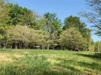 Building Lot in Franklin Tennessee : Franklin : Williamson County : Tennessee