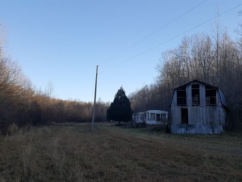 Wayne County TN Land 50 Acre Farm : Lawrenceburg : Wayne County : Tennessee