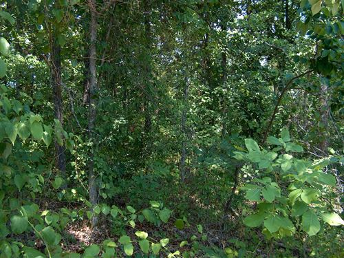 Building Lot, Lake Property TN : Lexington : Henderson County : Tennessee
