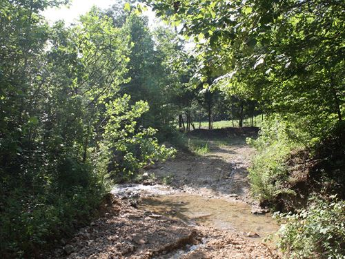 49.06 Acres, Creek Great Hunting : Linden : Perry County : Tennessee