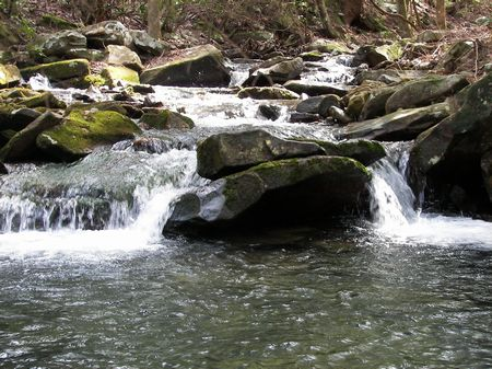 251.9 Acres Bluff Lots & Streams : Pikeville : Bledsoe County : Tennessee