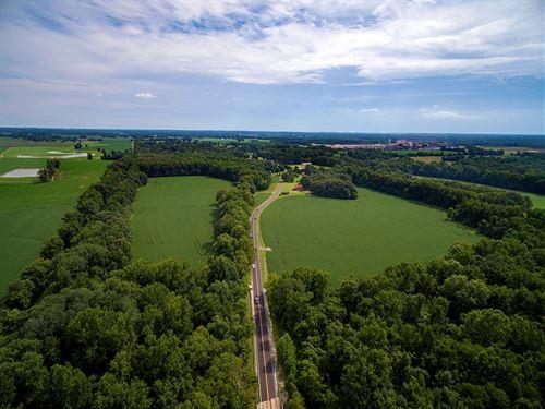 Row Crop Land Jackson, Tn, Timber : Jackson : Madison County : Tennessee