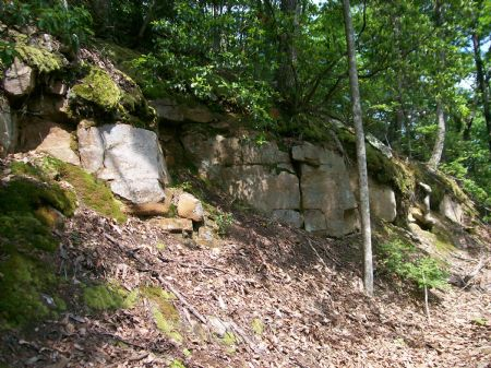 20.34 Acres Rock Bluffs Secluded : Pikeville : Bledsoe County : Tennessee