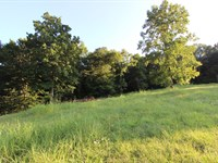 Lynnville, Tn, Giles County Acreage : Lynnville : Giles County : Tennessee