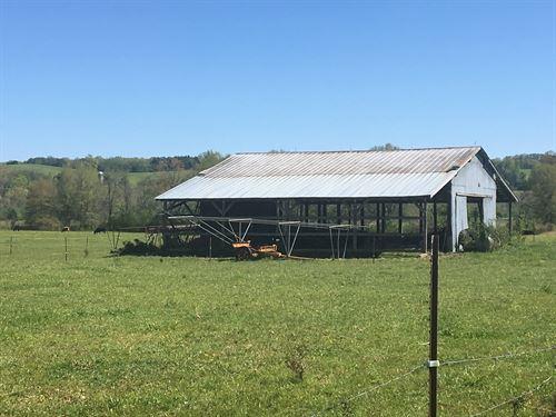 12 Level Acres Greene County Tenn : Mosheim : Greene County : Tennessee