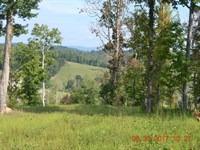 East TN Farm, Claiborne County TN : New Tazewell : Claiborne County : Tennessee