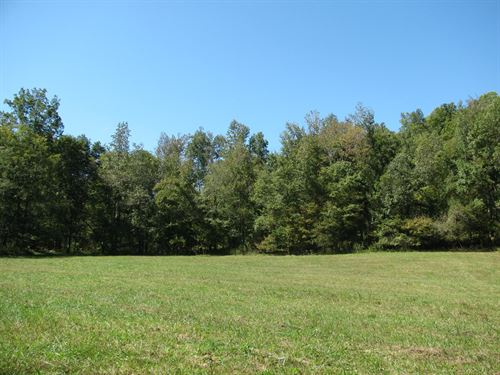 Hunting Camp W Barn & 195 Acres : Olivehill : Hardin County : Tennessee