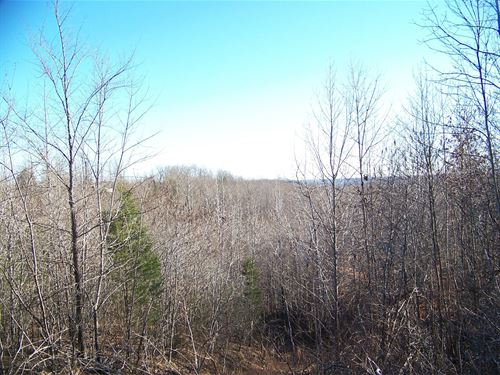 Unrestricted Land Tn, View To Build : Olivehill : Hardin County : Tennessee