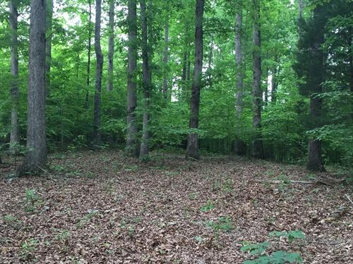 Approx 1319 Acres in Hickman Co : Pleasantville : Hickman County : Tennessee