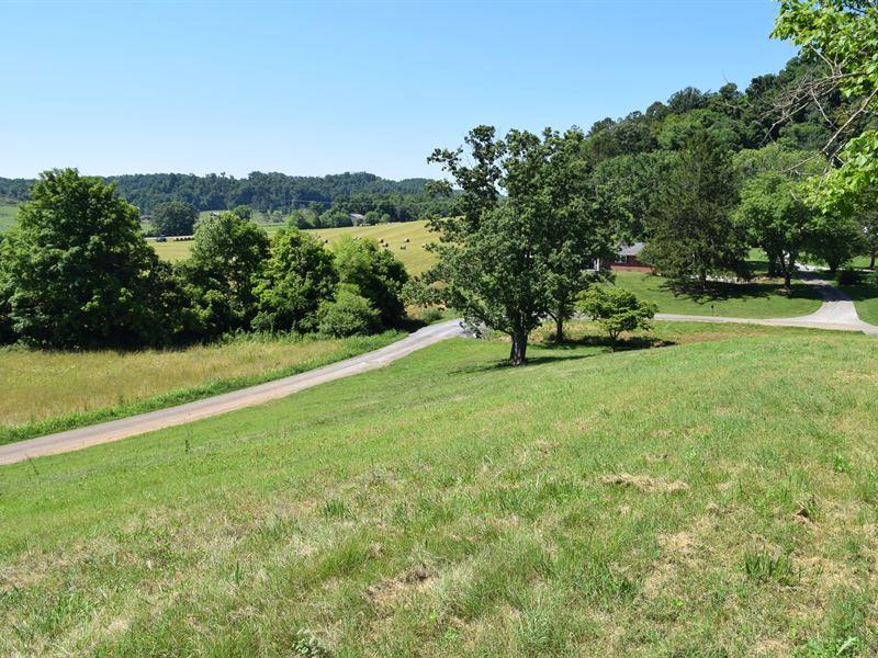 Rogersville Tennessee, Land East : Rogersville : Hawkins County : Tennessee