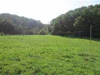 Mini Farm Grainger County : Rutledge : Grainger County : Tennessee