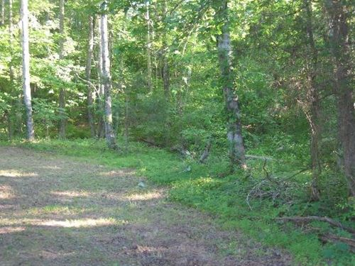 Unrestricted Building Land, 4 ac : Saltillo : Decatur County : Tennessee