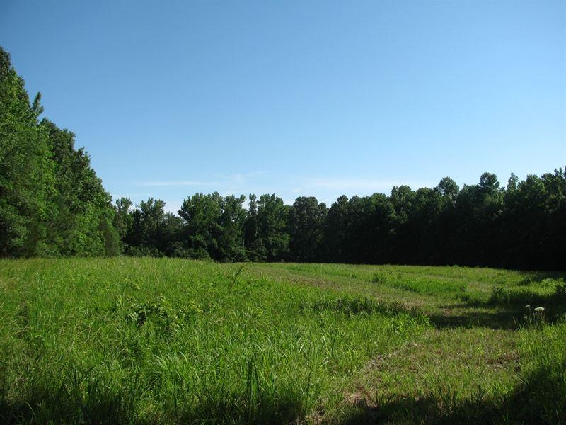 Land Hardin County, Tn, Timber : Saltillo : Hardin County : Tennessee