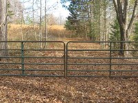 45 Acres Unrestricted Land TN : Sardis : Henderson County : Tennessee
