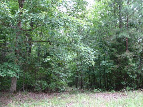 Wooded Land Savannah, Tn Pickwick : Savannah : Hardin County : Tennessee