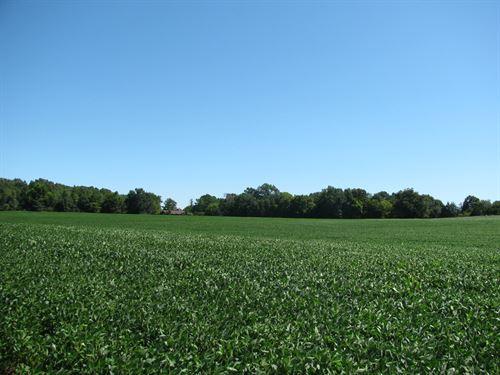 TN Land, Row Crop Land, Pasture : Savannah : Hardin County : Tennessee