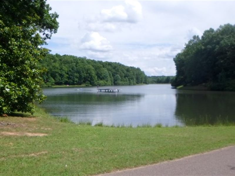 Lakefront Lot To Build A Home On : Selmer : McNairy County : Tennessee