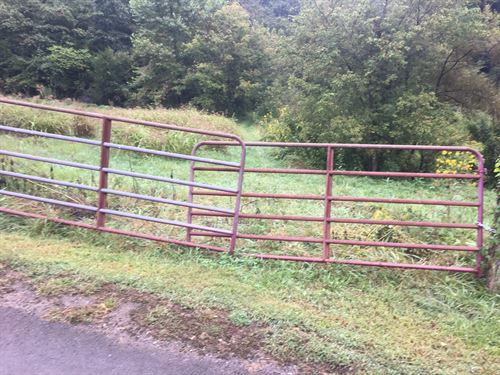 56 Acres For Sale in Tazewell, TN : Tazewell : Claiborne County : Tennessee