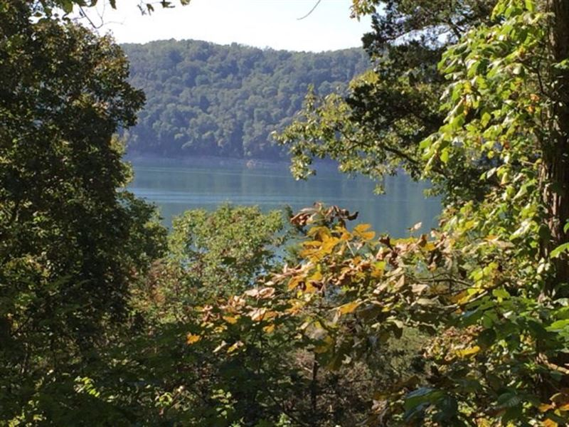 Wooded Tract Bordering Center Hill : Smithville : Dekalb County : Tennessee