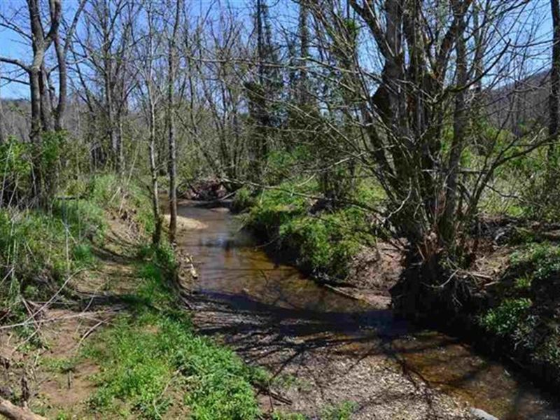 52.68 Surveyed Acres Mixture Flat : Sneedville : Hancock County : Tennessee