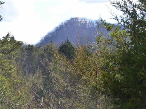 300 Acres Beautiful Mountain : Sneedville : Hawkins County : Tennessee