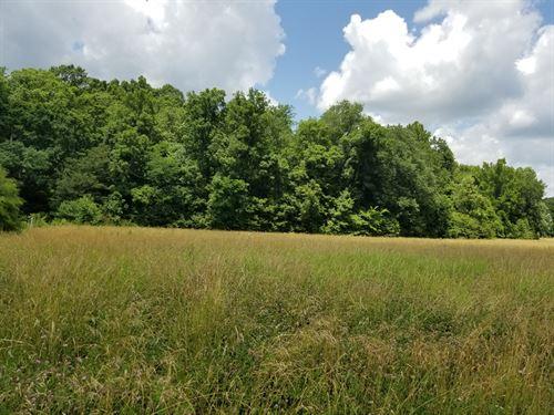 Waynesboro Wayne County Tennessee : Waynesboro : Wayne County : Tennessee