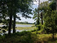100 Acre Shallow Lake 820 Acres : Alto : Cherokee County : Texas