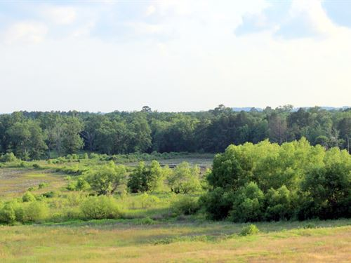 151 Acres Upshur County, 40,000 : Big Sandy : Upshur County : Texas
