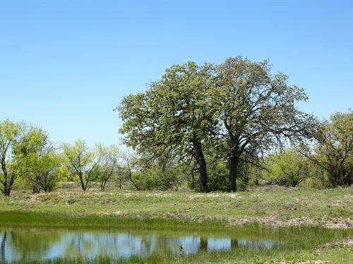 Brownwood TX Ranch, Hunting : Brownwood : Brown County : Texas