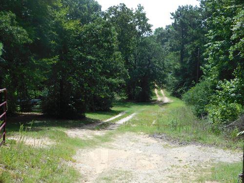 Wooded Acreage Leon County 2 Homes : Buffalo : Leon County : Texas