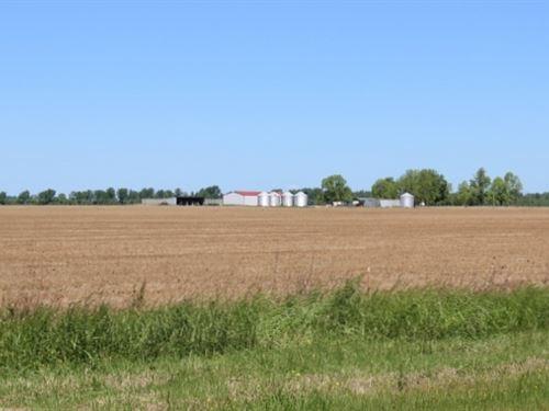 Row Crop Farm Bowie County, Texas : De Kalb : Bowie County : Texas