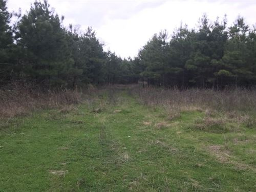 Hunting / Recreation Bowie County : De Kalb : Bowie County : Texas