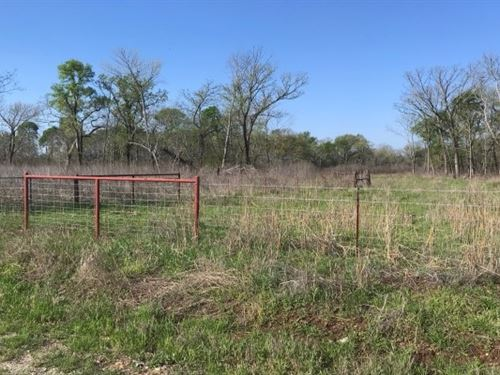 Duck / Deer Hunting In Bowie County : De Kalb : Bowie County : Texas