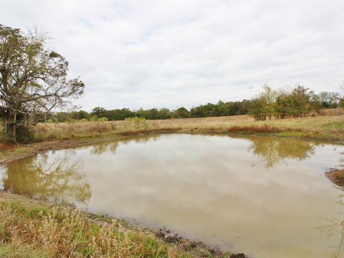 Acreage, Lake Limestone, Leon : Marquez : Leon County : Texas