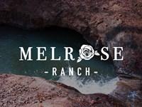 1200 Ac Land, Massive Pastureland : Melrose : Nacogdoches County : Texas