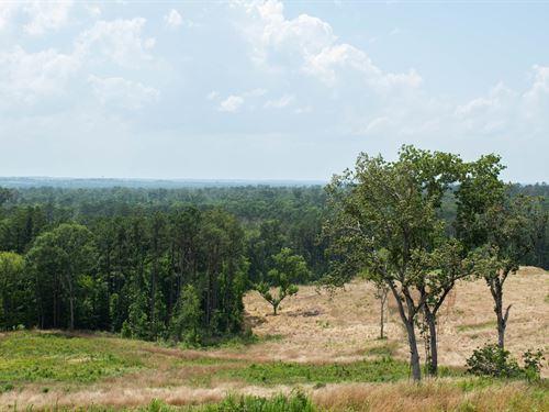 825 Acres Nacogdoches Co : Melrose : Nacogdoches County : Texas