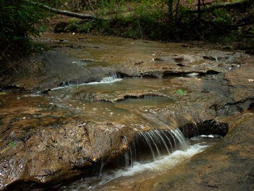 Land Nacogdoches Tx, Spring Fed : Melrose : Nacogdoches County : Texas