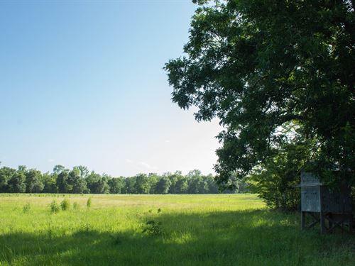 Hunting Ranch, Pastures, Hardwoods : Oakwood : Freestone County : Texas
